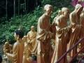 10.000 Buddha Sha Tin 2016 -022