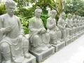 10.000 Buddha Sha Tin 2016 -267