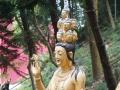 10.000 Buddha Sha Tin 2016 -276
