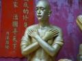 10.000 Buddha Sha Tin 2016 -327