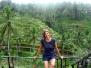Bali - Reisterrassen