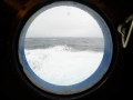 Jan2020_Beagle-Falkland-003