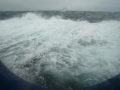 Jan2020_Beagle-Falkland-045