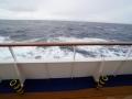 Jan2020_Beagle-Falkland-052