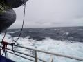 Jan2020_Beagle-Falkland-055