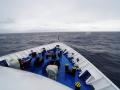 Jan2020_Beagle-Falkland-061