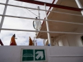 Jan2020_Beagle-Falkland-092