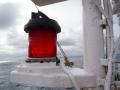 Jan2020_Beagle-Falkland-111
