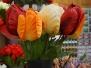 Blumenmarkt Singelgracht