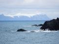 Jan2020_CapeLookout_Antarctic-004