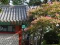 HaeundaeBeach_Busan2018-076