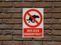 DeHallenAmsterdam_May2018_-146