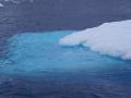 Jan2020_Fotoboat_PeneauIsland_Antarctic-118