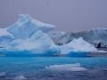Jan2020_Fotoboat_PeneauIsland_Antarctic-139