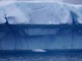 Jan2020_Fotoboat_PeneauIsland_Antarctic-147