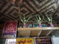 Mandalay Foodtour_Oct_2017 -007