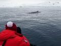 Jan2020_FournierBucht_Antarctic-009