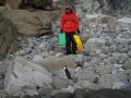 Jan2020_GibbsIsland_Antarctic-109