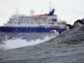 Jan2020_GibbsIsland_Antarctic-170