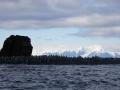 Jan2020_GibbsIsland_Antarctic-253