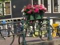 Amsterdam_May2018-156