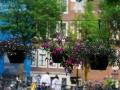 Amsterdam_May2018-162