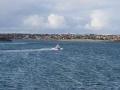 Jan2020_Falkland_CypsyCove-000