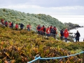 Jan2020_Falkland_CypsyCove-005