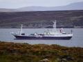 Jan2020_Falkland_CypsyCove-080
