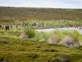 Jan2020_Falkland_CypsyCove-084