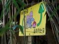 HaedongYonggungsaTempel_Busan2018-060