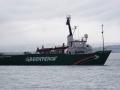 Jan2020_HannahPoint_Antarctic-054