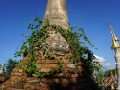 Shwe Inn Thein_Inle Lake_Oct_2017 -069