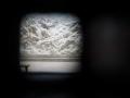 brussel art nouveau-069
