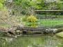 Kaisergarten Tokyo