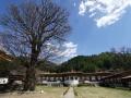 MonasterysBumthang2019-03- -082