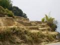 Rangjung-monasterys-2019-143