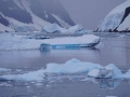 Jan2020_LemaireChannel_Antarctic-044
