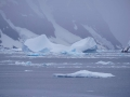 Jan2020_LemaireChannel_Antarctic-051