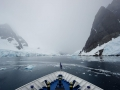 Jan2020_LemaireChannel_Antarctic-059