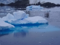 Jan2020_LemaireChannel_Antarctic-083