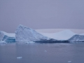 Jan2020_LemaireChannel_Antarctic-086