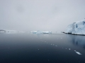 Jan2020_LemaireChannel_Antarctic-088