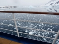 Jan2020_LemaireChannel_Antarctic-098