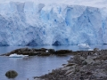 Jan2020_NekoHarbour_Antarctic-027