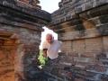 Bagan Gawdaw Palin Tempel_Oct_2017 -043