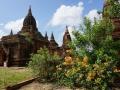 Bagan Payangazu Gruppe_Oct_2017-006