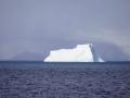 Jan2020_PointWild_Antarctic-002