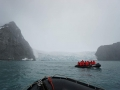 Jan2020_PointWild_Antarctic-114
