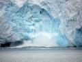 Jan2020_PointWild_Antarctic-151